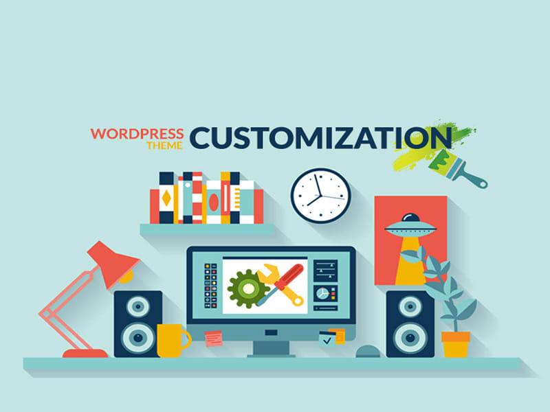 customization wordpress video theme